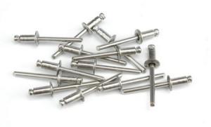 Kniedės nerūdijančio plieno 4.0*9.6 mm 50 vnt. 11125 Savex